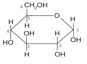 alpha-glucose