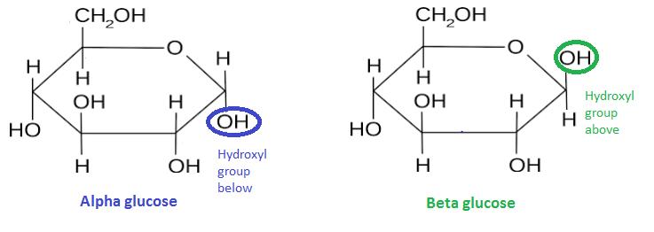 alpha-v-beta-glucose